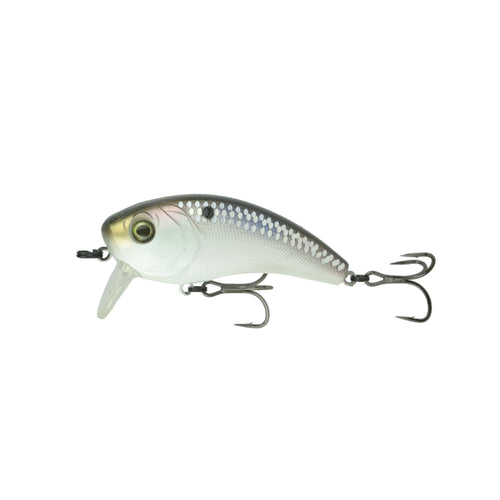 Movement 80WK - Shad Scales