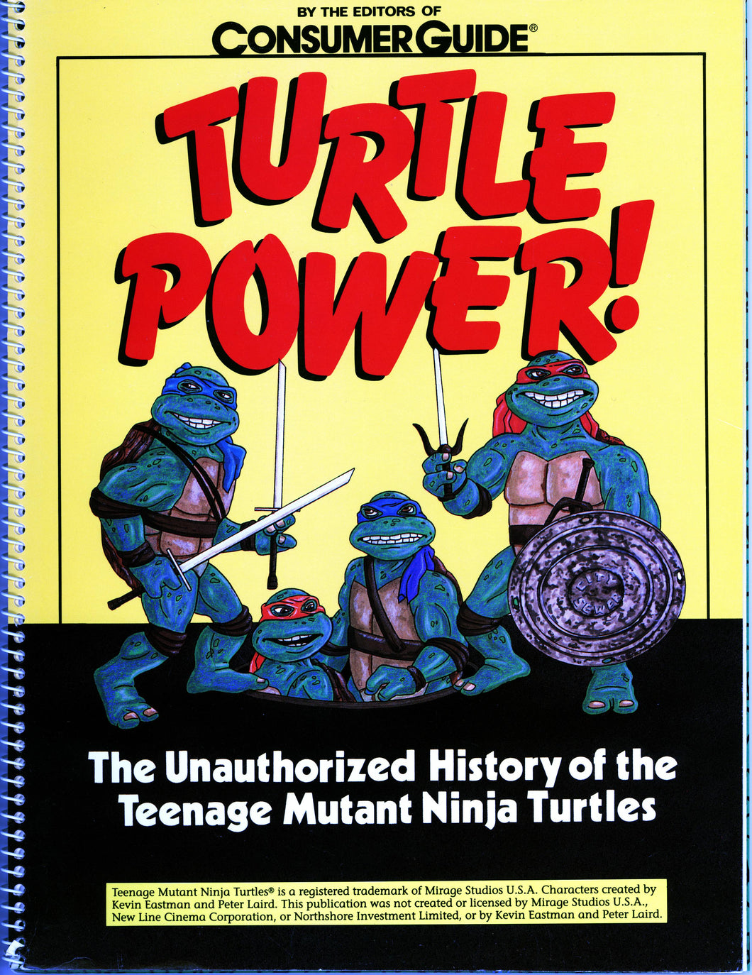 TURTLE POWER HISTORY TEENAGE MUTANT NINJA TURTLES- VINTAGE 1990 TMNT