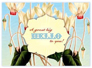 B111 Boxed cards - A Great Big Hello To You!