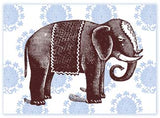 B118 Boxed cards - Elephant