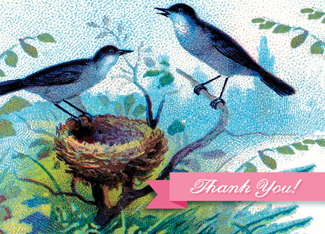 B135 Boxed cards - Thank You! - Robins