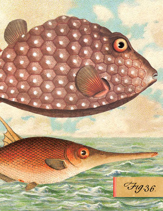 SB507 Single seaside card  - Two Fish