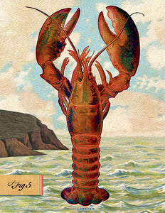 SB508 Single seaside card  - Lobster
