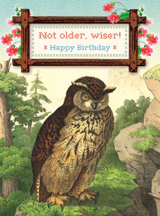 CC184 Not Older, Wiser! Happy Birthday Owl