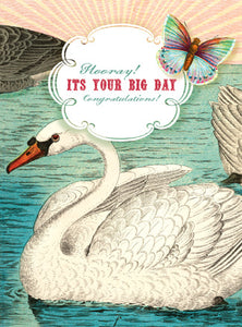CC191 Hooray! It's Your Birthday Congratulations! Swan