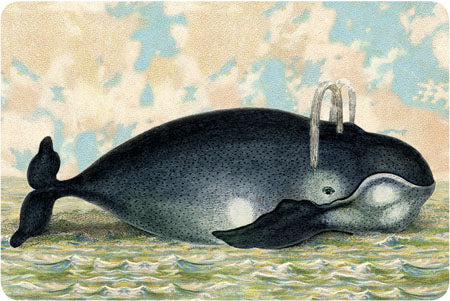 P102 Seaside postcards - Whale