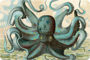 P104 Seaside postcards - Octopus