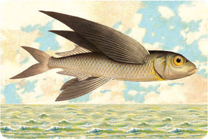 P105 Seaside postcards - Flying Fish