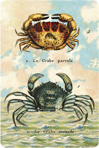 P110 Seaside postcards - Two Crabs