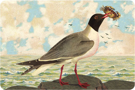 P112 Seaside postcards - Seagull