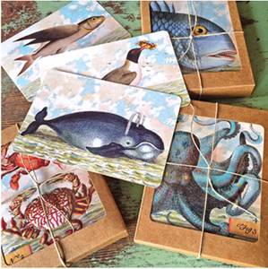 Boxed seaside cards