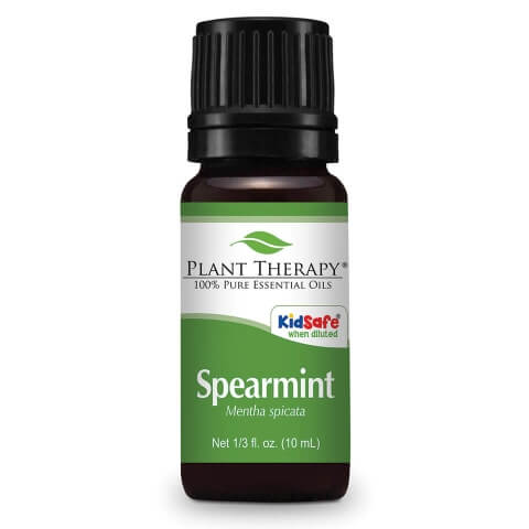 Spearmint Essential Oil ll Plant Therapy - SimplyGinger