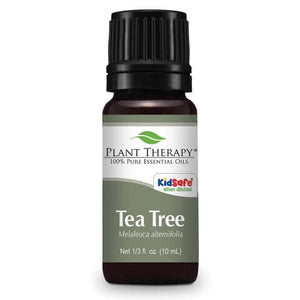 Tea Tea Essential Oil ll Plant Therapy