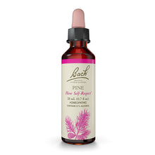 Pine Flower Essence ll Bach Flower Remedies - SimplyGinger