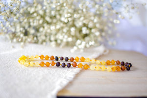 Raw Tri-Fade , Lemon, Honey, Apricot, and Cherry Baltic Amber Teething Necklace