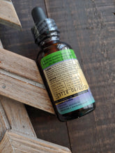 Minty Ginger Digestion Tincture ll Organic Herbs - SimplyGinger