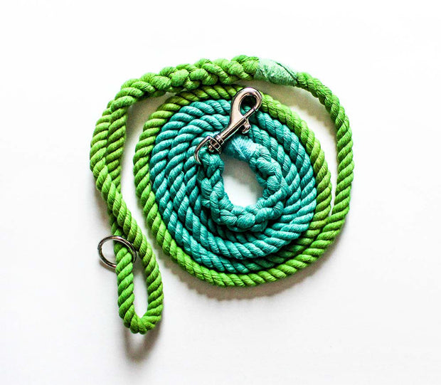8mm Rope Leash in Apple Green/Aqua, Leashes, Jolly Hound, - Winnie Lou - The Canine Company