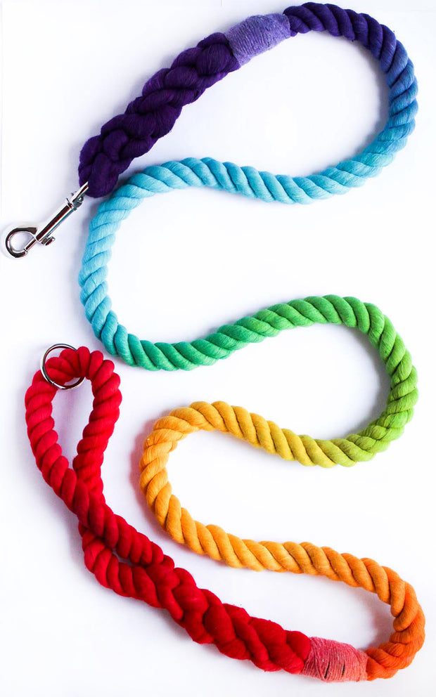 12mm Rope Leash in Rainbow, Leashes, Jolly Hound, - Winnie Lou - The Canine Company