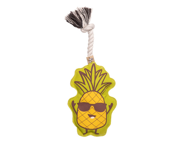 Rope Toy- Chill Pineapple, Play, Ore Pet, - Winnie Lou - The Canine Company