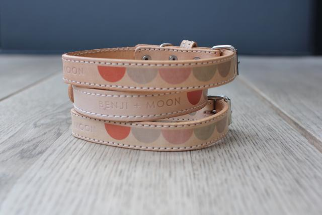 Leather Dog Collar in Natural Multi Moon, Collars, Benji & Moon, - Winnie Lou - The Canine Company