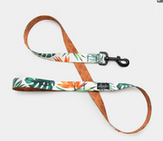 Tropicana Dog Leash, Leashes, Leed's, - Winnie Lou - The Canine Company