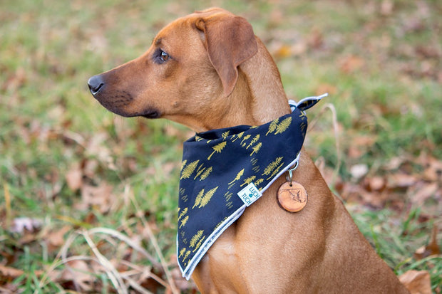 Woodie Dog Bandana, Bandanas, Luck of Tuck, - Winnie Lou - The Canine Company