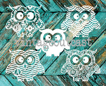 Owl Monogram Decal - Vintage Outcast