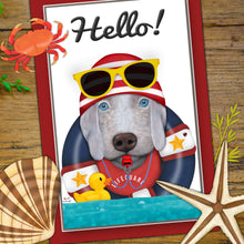Summer Hello Postcards - Set of 6
