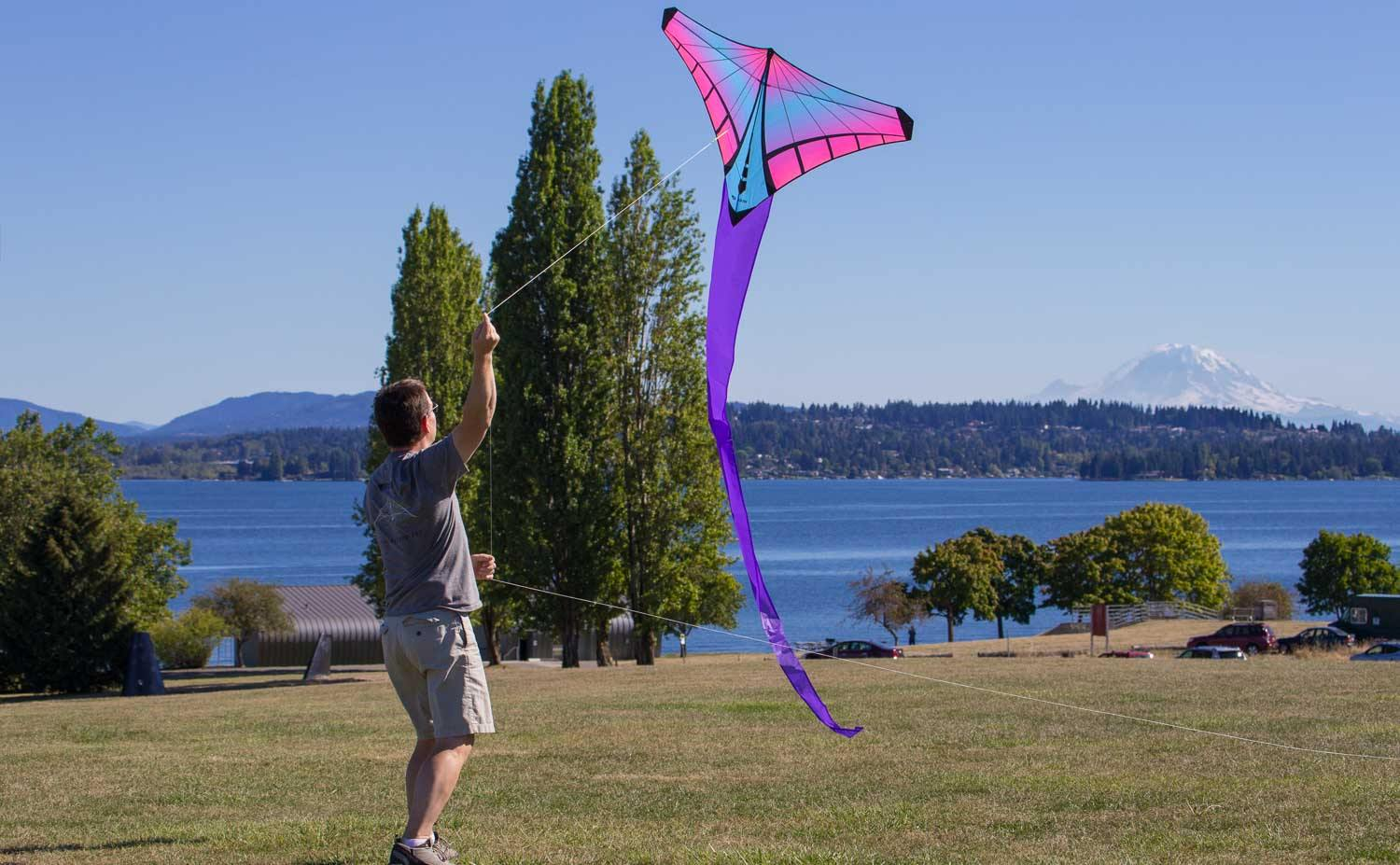 Mantis Prism Kite - Urban Surf