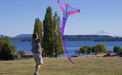 Mantis Prism Kite