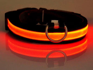 Nightbright Glow-In-The-Dark Led Safety Collar