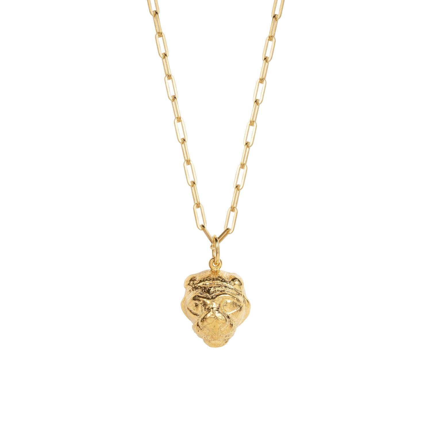 Lions Head Necklace Gold