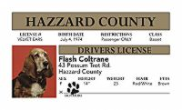 """Flash"" Novelty Driver License"