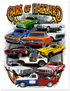 Cars of Hazzard Poster Print (22x17)