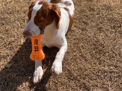 Cooter's Garage General Lee Tennis Dog Bone