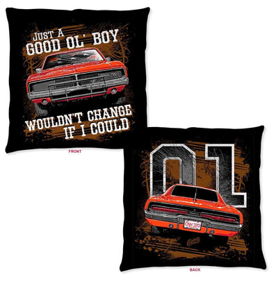 "Throw Pillow Cooter's ""Good Ol' Boy, Would Change If I Could"""