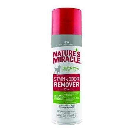 Nature's Miracle Dog Stain & Odor Remover Foam, 17.5 fl. oz.