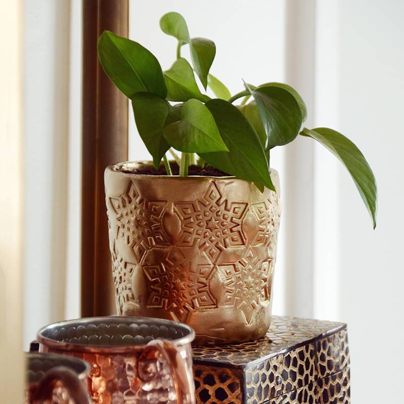 DIY Rubber Stamped Clay Planter