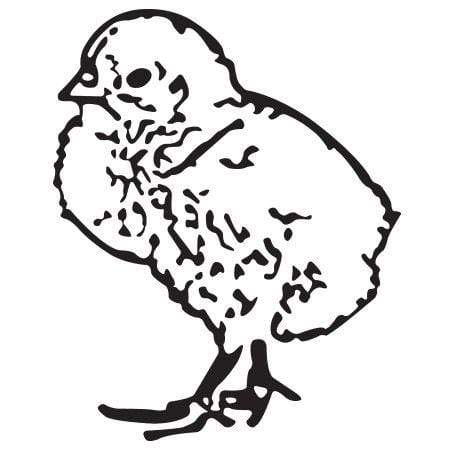 Craft Stamp Chick Stamp