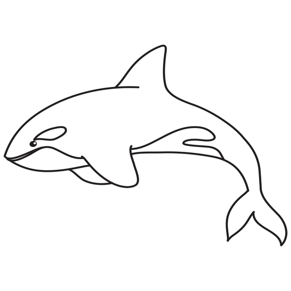 Craft Stamp Orca Stamp