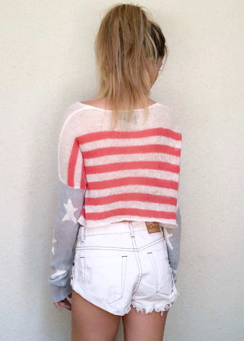 American Flag Cropped Sweater