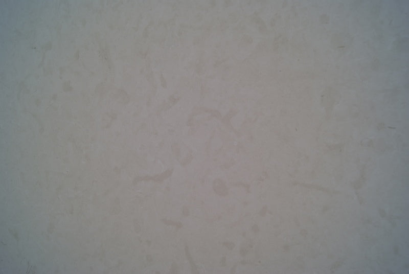 NOVELDA Limestone honed 2cm thick - Slab Series