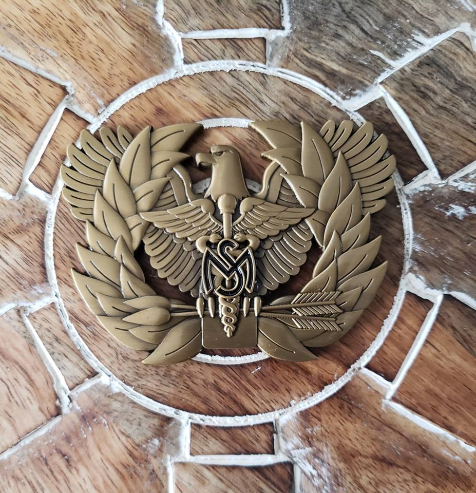 Medical Service Branch Eagle Rising Coin