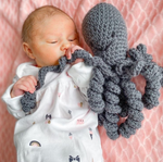 "Baby Octopi ""Signature Octopus"""