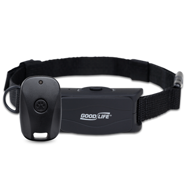 BarkWise™ Complete on a black collar strap with its included remote control