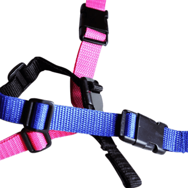 BarkWise™ Collar Strap in three colors – blue, black, and pink