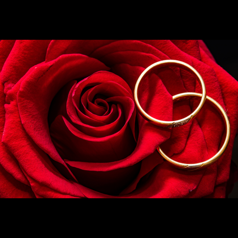 Valentine's Day: Jewelry Gift Ideas for Her | Boca Raton, FL