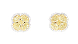 two tone fancy yellow and white diamond earrings