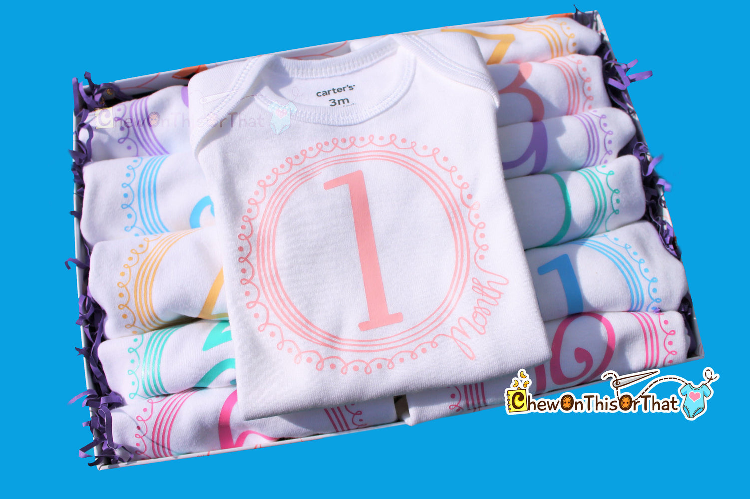 Girls 12 Month Pastel Baby Milestone Bodysuit Set, Birth Month Top, Monthly Birthday Shirt, Anniversary, New Mom Gifts, Baby Shower Set - Chew On This Or That