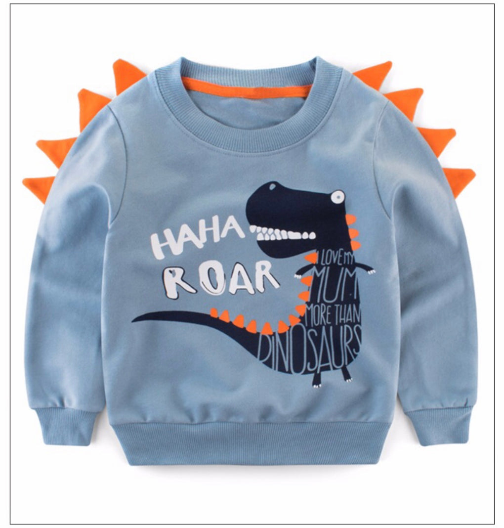 Boys Dinosaur Novelty Long Sleeve